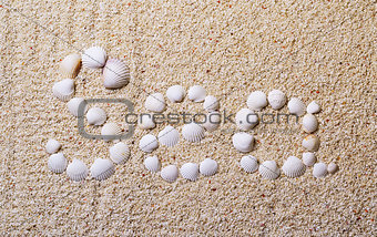 "Title ""Sea"" from shells with coral sand"