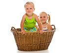 siblings in big basket