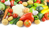 Organic Different Vegetables /  on white background