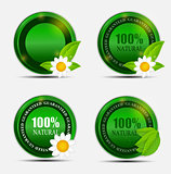 100% Natural Green Label Set. Vector Illustration