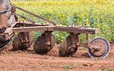 Tractor in flower garden