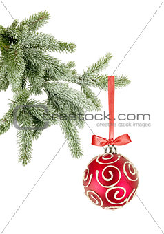 Christmas ball on the tree on white background
