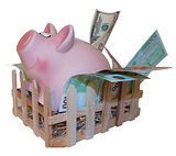Claustrophobic Piggy bank leaving pigpen