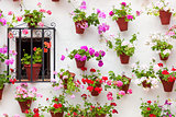 Beautiful Window and Wall Decorated Flowers - Old European Town,