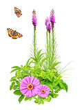 Summer flowers, green leaves and butterfly