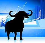 bull on blue stock market graph background
