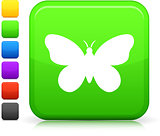 butterfly icon on square internet button