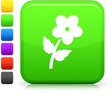 flower icon on square internet button