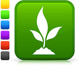 young plant icon on square internet button
