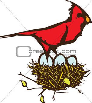 Cardinal Nest