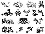 Set of black silhouettes of floral elements over white