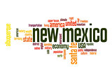 New Mexico word cloud