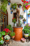 Courtyard with Flowers decorated and Old Well - Cordoba Patio Fe