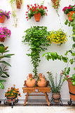 Cordoba Patio Fest - Private Courtyard with Flowers decorated ,