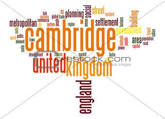 Cambridge word cloud