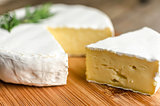 Head of camembert