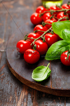 Tomatoes with basil on wooden table background
