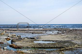 Flat rock coast
