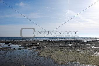 Flat and rocky coastline