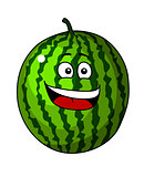 Happy refreshing green cartoon watermelon