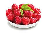 tasty raspberry fruit