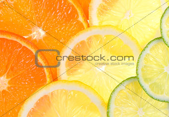Slices of fresh citrus fruits