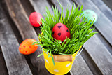 Colorful painted Easter egg on a fresh green grass