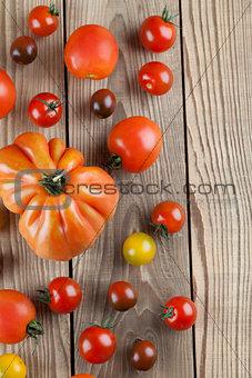 Tomatoe border