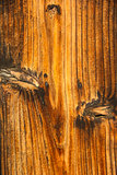 Wood brown texture