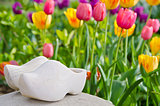 Dutch wooden shoes and tulips