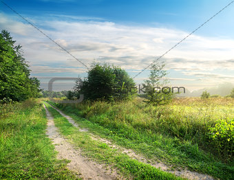 Country road and field