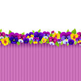 Background With Colorful Pansies