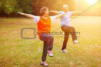 Senior healthy fitness couple with sunset background