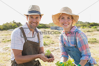 Young couple with young plant in the field