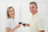 Happy couple toasting wine glasses
