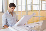 Concentrated businessman working on blueprints in office
