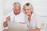 Smiling mature couple using laptop