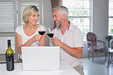 Mature couple toasting wine glasses at home