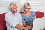 Smiling casual mature woman using laptop