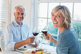 Portrait of a mature couple toasting wine glasses over food