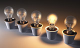 Row of light bulbs in pots