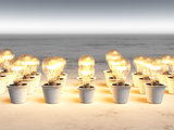 Rows of light bulbs with warm light