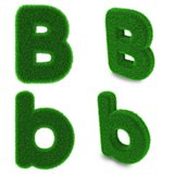 Letter B made of grass