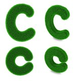 Letter C made of grass