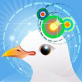 Bird navigation