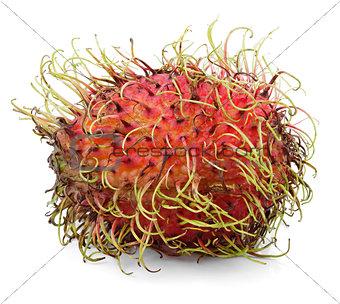 Single rambutan fruit isolated on white