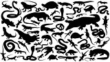 reptiles silhouettes