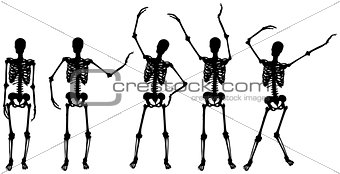skeleton silhouette movements on white background