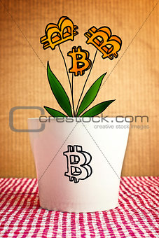 Growing bitcoins in flower pot, conceptual image
