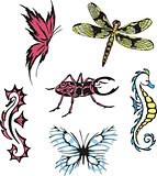 miscellaneous insects and sea horses
